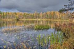 Jesień na lake Obraz Royalty Free