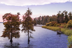 Jesień na Riverbank Zdjęcia Royalty Free
