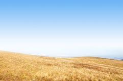 Jesień obszar trawiasty z suchymi brown trawami i niebieskim niebem Zdjęcie Royalty Free