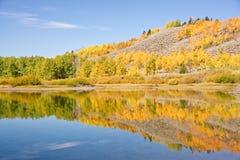 jesień odbicia Obraz Stock