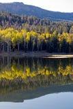 jesień odbicie Obraz Royalty Free