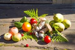 jesień owoc warzywa Obraz Royalty Free