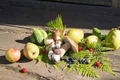 jesień owoc warzywa Obrazy Royalty Free