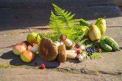 jesień owoc warzywa Obraz Stock
