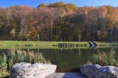 jesień park, rzeka, jezioro Obrazy Royalty Free