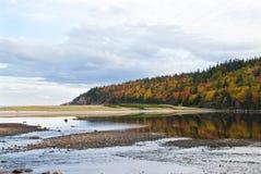 jesień pastel Zdjęcie Royalty Free