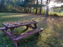 Jesień podwórko Zdjęcia Royalty Free