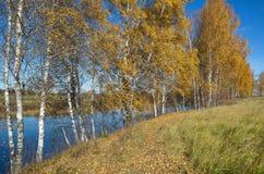 jesień pogoda krajobrazowa rzeczna pogodna Fotografia Stock