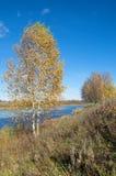 jesień pogoda krajobrazowa rzeczna pogodna Obraz Stock