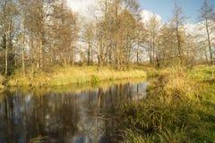 jesień pogoda krajobrazowa rzeczna pogodna Zdjęcie Stock