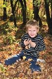 jesień pogodna Obraz Royalty Free