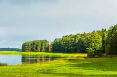 Jesień pogodny krajobraz Soroti rzeka i jesieni lasowi drzewa w Pushkinskiye Krwawym, Rosja Zdjęcia Royalty Free