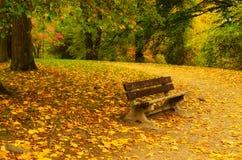 Jesień pogodny park Zdjęcia Royalty Free