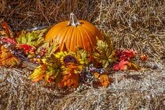 Jesień pokaz Obrazy Royalty Free