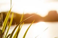 Jesień przy jeziorem Zdjęcie Royalty Free