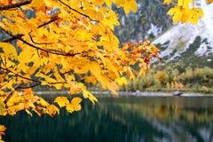 Jesień przy jeziornym Gosausee w Austria Fotografia Royalty Free