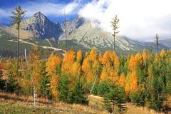 Jesień przy Wysokimi Tatras górami, Sistani Obrazy Royalty Free