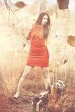 Jesień przynosi out jej cudacką stronę Fotografia Royalty Free
