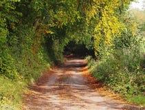 jesień puszka angielski pas ruchu wiejski Zdjęcie Stock