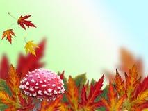 jesień rama Zdjęcie Stock