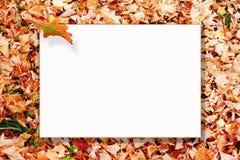 jesień rama Fotografia Stock