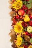 Jesień rama Obrazy Royalty Free
