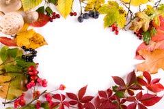 jesień rama Obraz Royalty Free