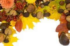 jesień rama Fotografia Royalty Free