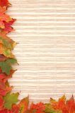 jesień rama Obrazy Stock