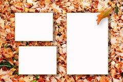 jesień rama trzy Obrazy Royalty Free