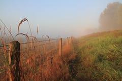 jesień ranek zdjęcia stock