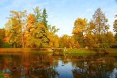 Jesień ranek Fotografia Royalty Free
