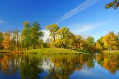 Jesień ranek Obraz Stock