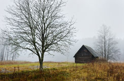 jesień ranek wioska obrazy stock