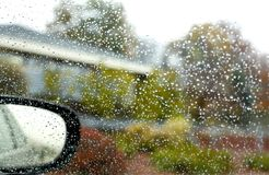 jesień rozmyty jaskrawy krzaków kropel deszcz obraz stock