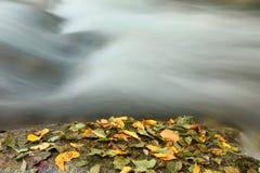 jesień rzeka Fotografia Royalty Free