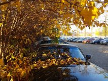 Jesień samochód zdjęcia stock