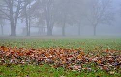 Jesień scena Zdjęcie Royalty Free