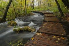 jesień sceneria Zdjęcie Royalty Free