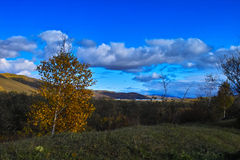 jesień sceneria Obraz Royalty Free