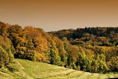 jesień sceneria Zdjęcia Royalty Free