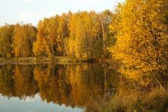 jesień sceneria Zdjęcie Stock