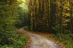 jesień spacer Obrazy Stock