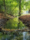 Jesień spacer fotografia stock