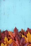 Jesień spadku Nieociosany Drewniany tło Zdjęcie Stock