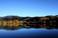 Jesień spadku Osikowy Drzewny odbicie w jeziorze Zdjęcie Stock