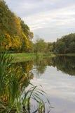 Jesień staw Zdjęcie Royalty Free