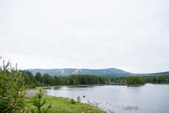 Jesień, staw i sosnowy las, Zdjęcie Stock