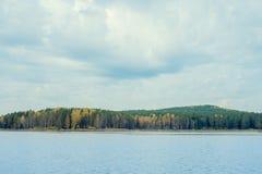 Jesień, staw i sosnowy las, Zdjęcie Royalty Free