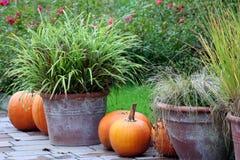 jesień szczegół Obrazy Royalty Free